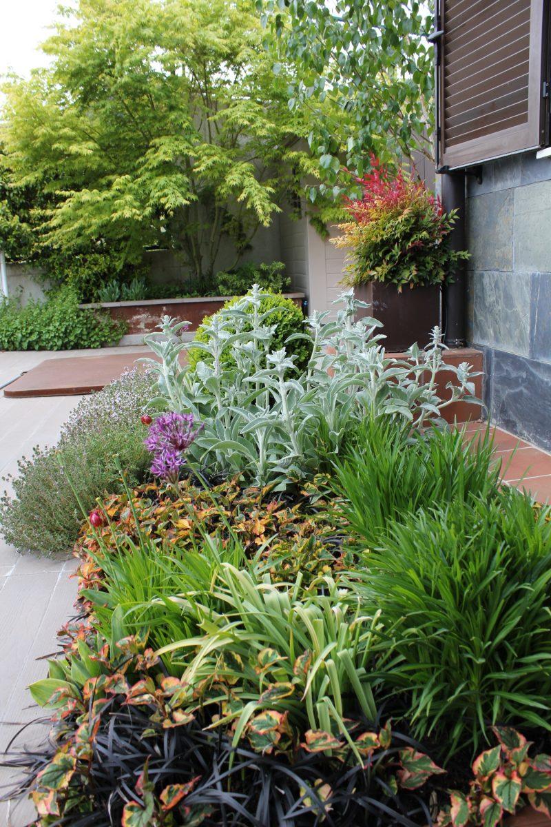 Asesoramiento en el ámbito del mantenimiento de jardines
