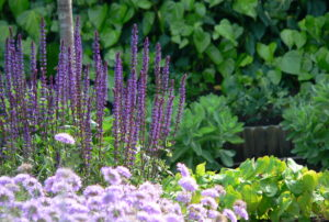 El jardín como herramienta.