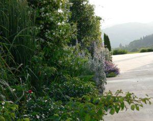 Agrupaciones de plantas en el diseño de jardines.