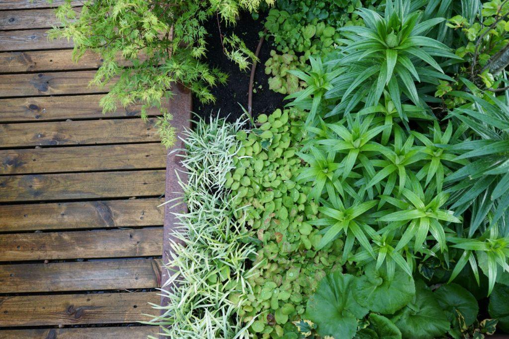 Jardinarias en una composición para plantar cerca del agua.